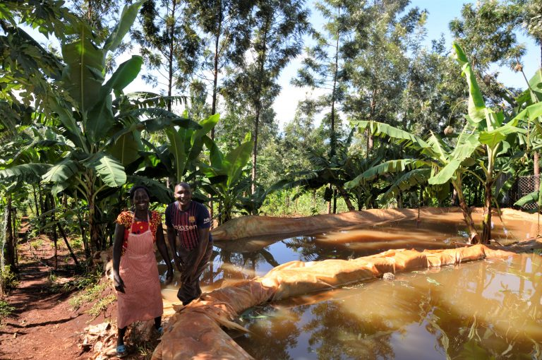 Julius Irungu and his wife next to their farm ponds. Photo: World Agroforestry Centre/ Susan Onyango